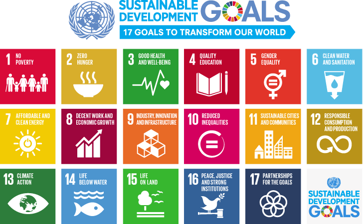 ONU Development Goals