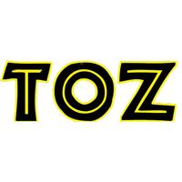 Goldschmeding-Automatisering-Logo-TOZ-by-Esther-Dansschool