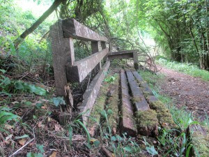 A chair beside a path at Cwm Ivy