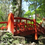 Red and white Japanese Bridge in Clyne Gardens