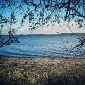 Strand i Kollund