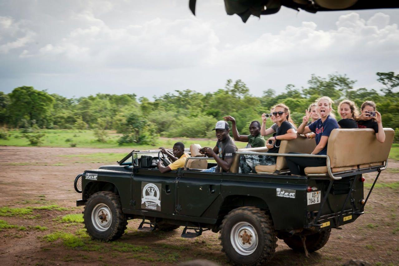 Safari Culture Tour Mole National Park