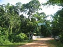 Ankasa Conservation Area