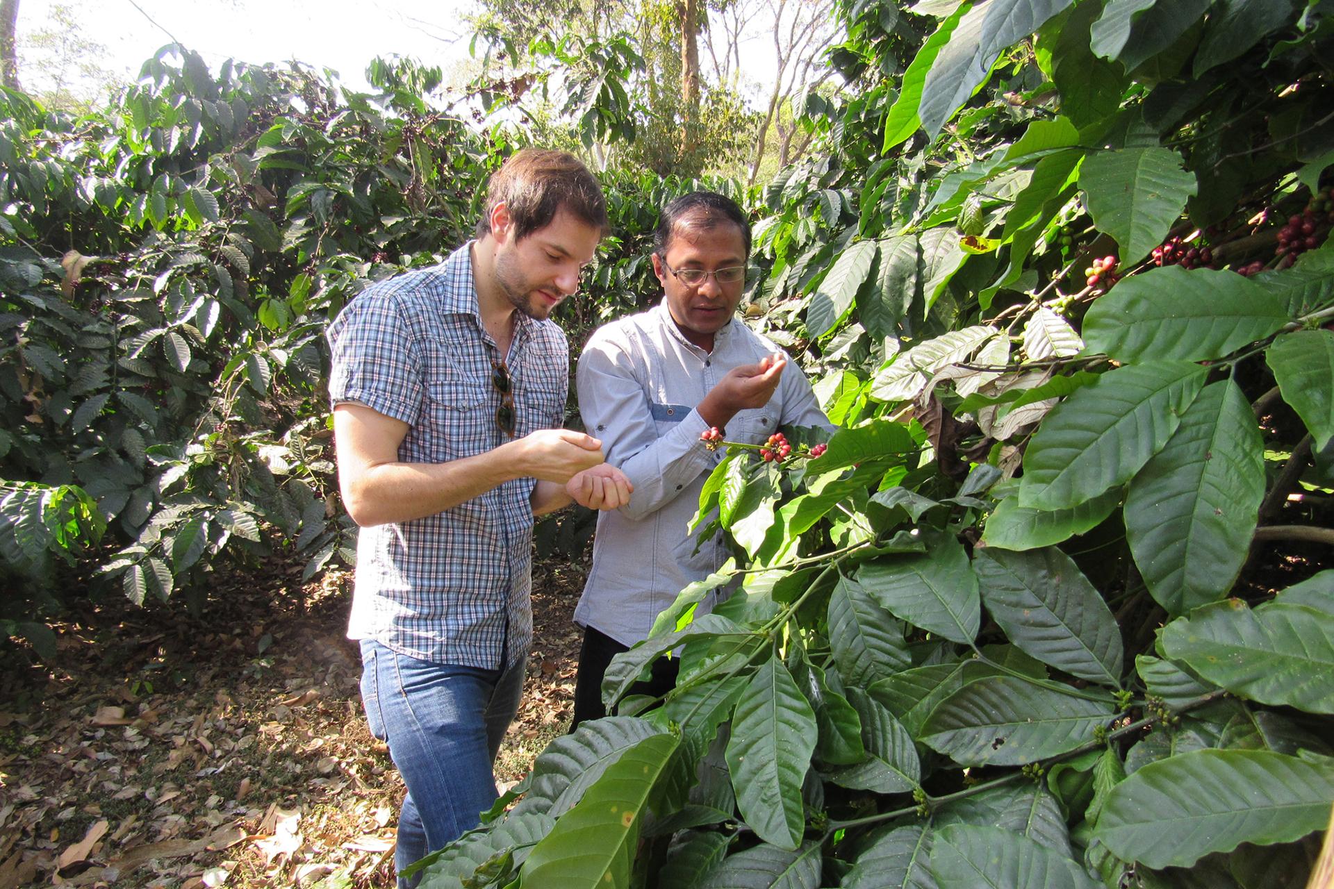 Jonas Braun mit Mitarbeiter auf der Elk Hill Coffee Farm