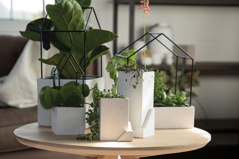 Schaffe grüne Oasen mit »Hausgarten« und »Gartenstadt«
