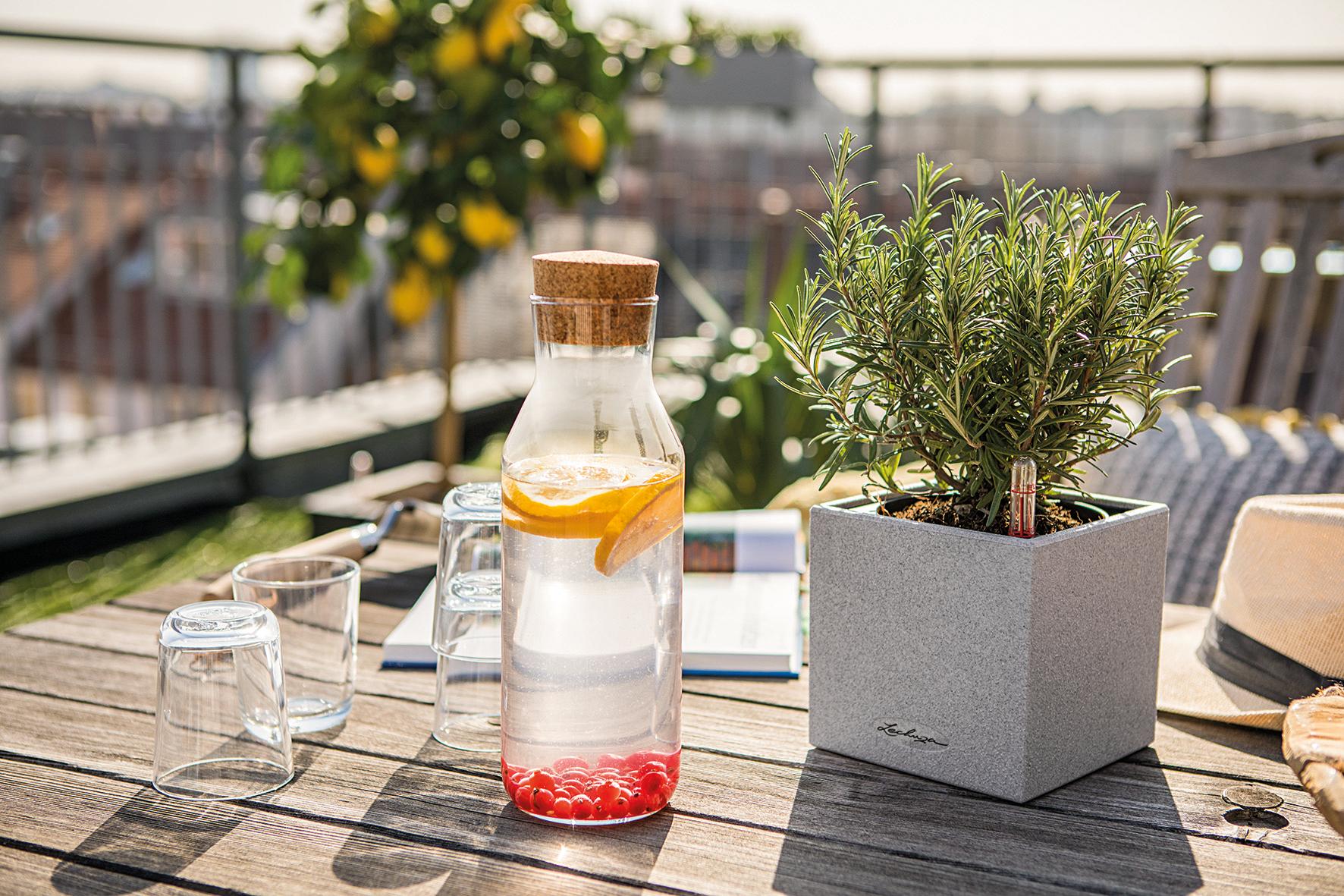 Das Tischgefäß CANTO Stone 14 macht jede Pflanze zum Hingucker