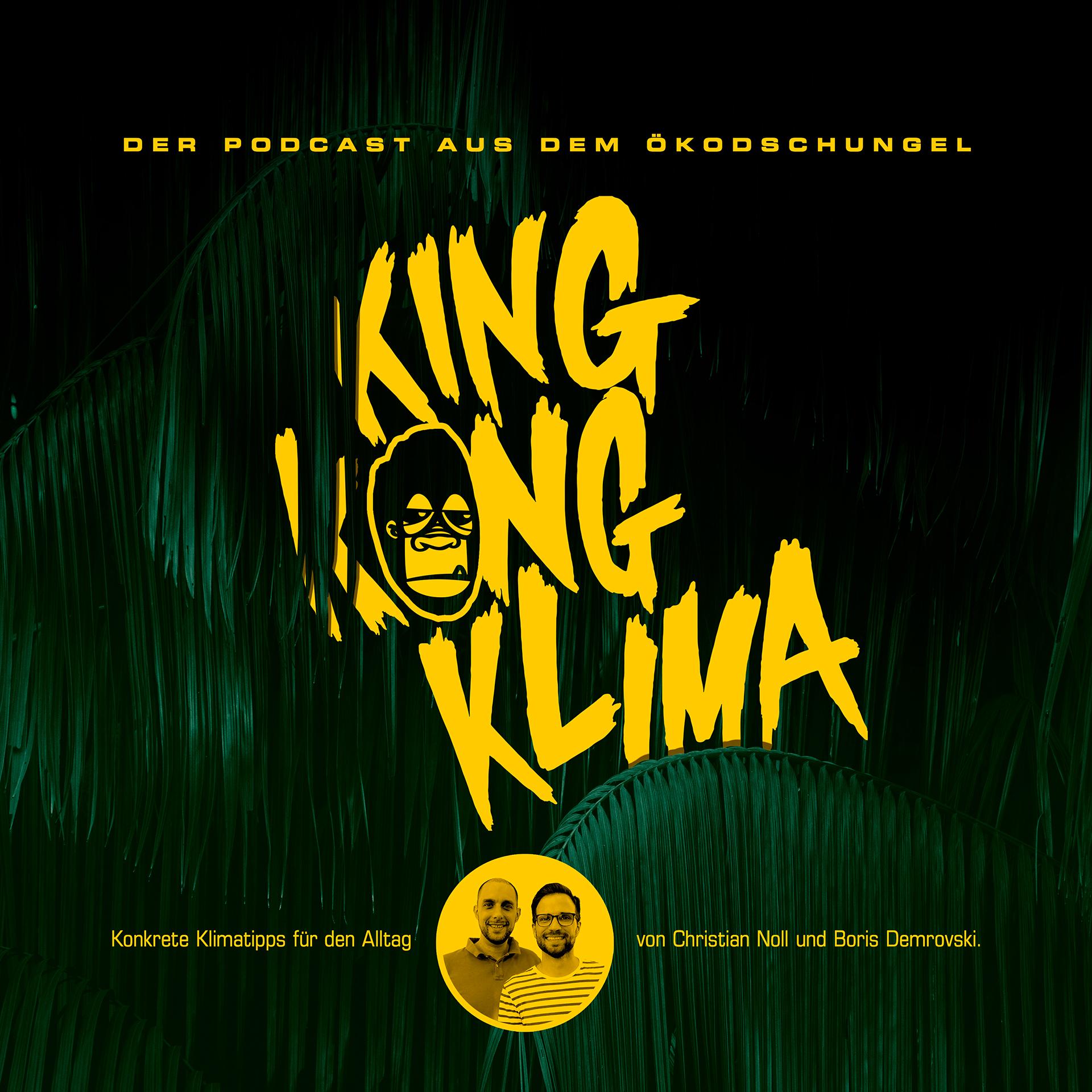 King Kong Klima - Konkrete Klimatipps für den Alltag