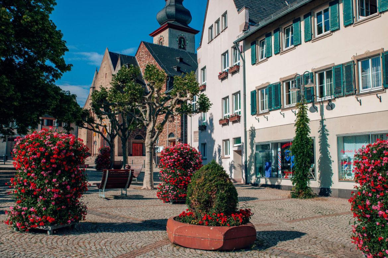 Flower-Power für alle – Rüdesheim blüht auf