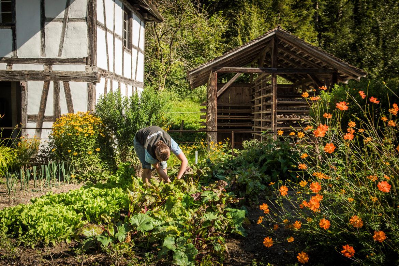 Die historischen Gemüsegärten der Schweiz