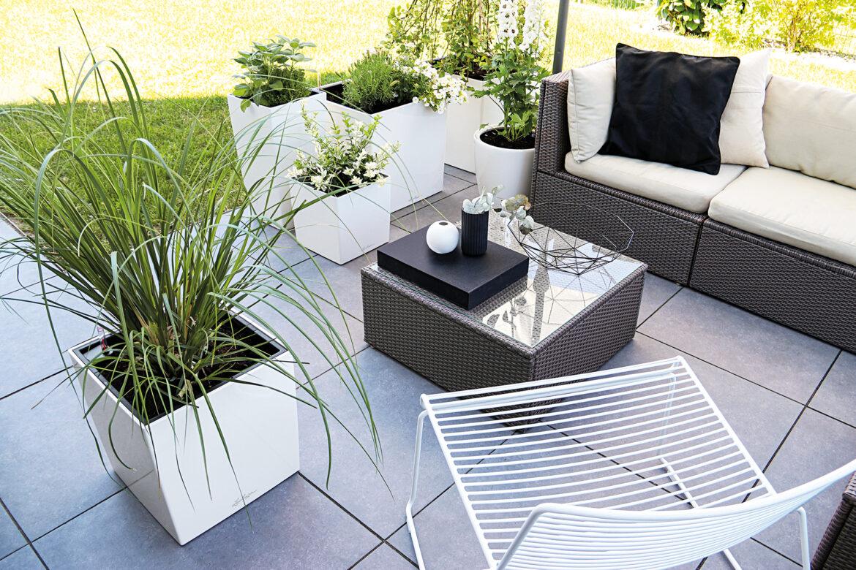 Black & White – Eleganz für deine grüne Oase