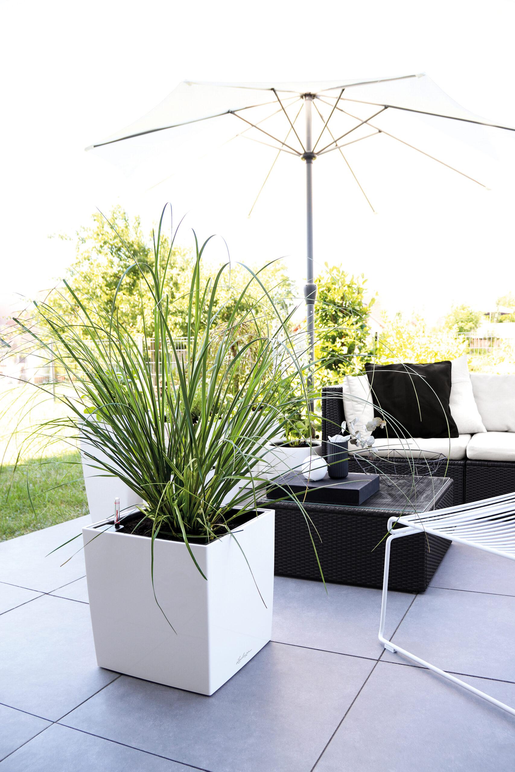Elegante Leichtigkeit auf der Terrasse
