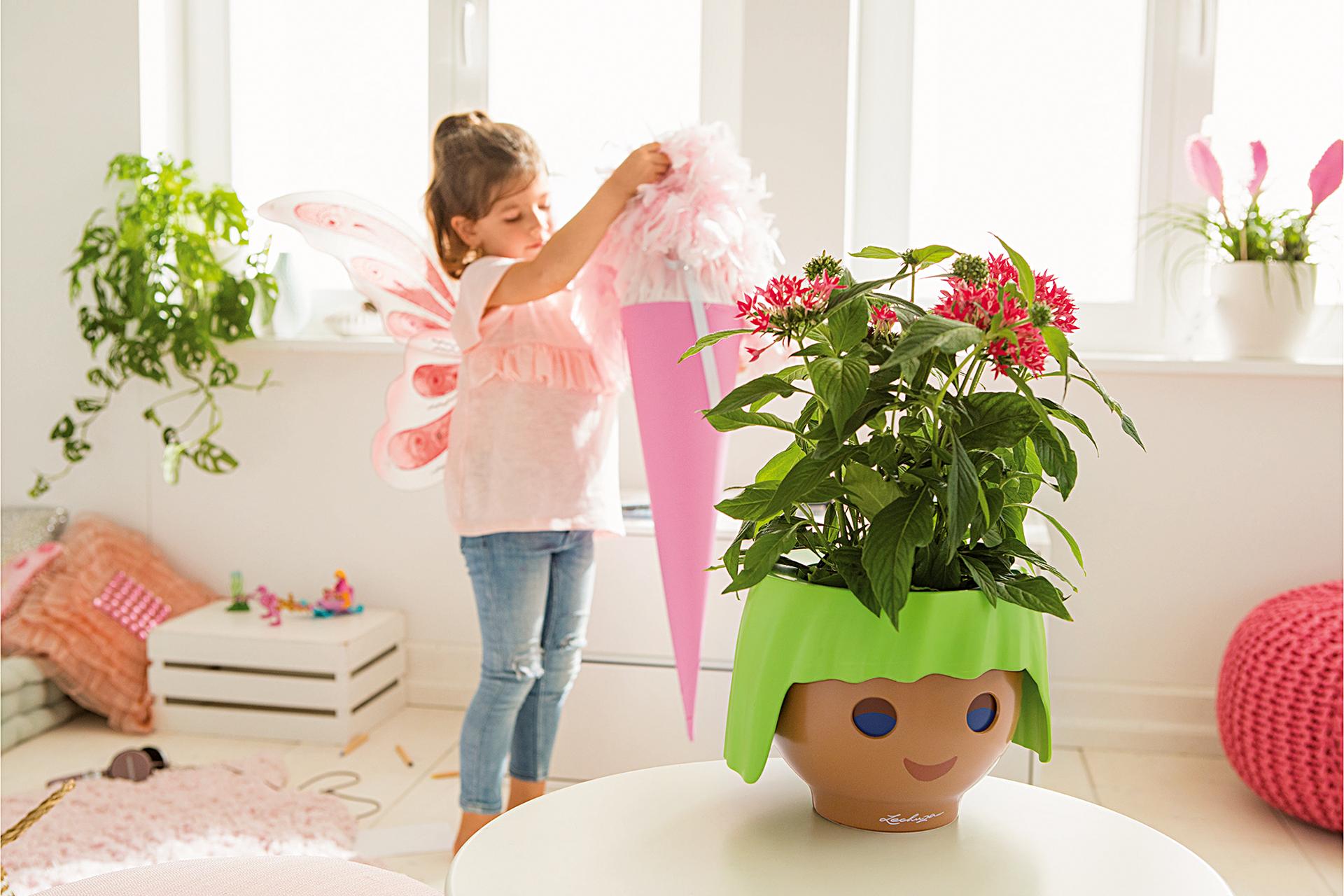 Blühendes Geschenk zum Schulanfang – nicht nur – für kleine Feen