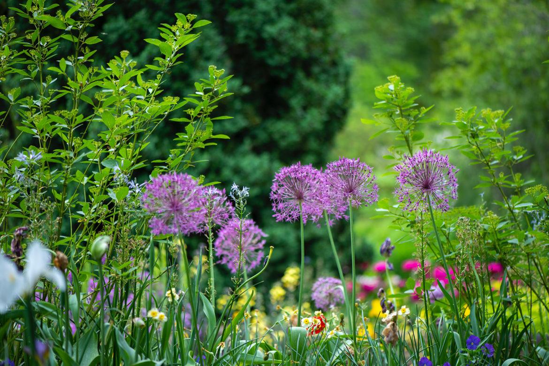 So übersteht dein Garten jedes Wetter
