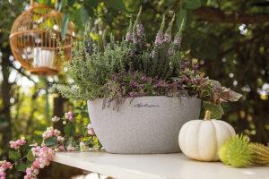 Herbstideen von LECHUZA