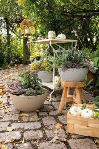 Herbstliches Ambiente mit CUBETO Stone 30 und 40 in Sandbraun und Steingrau