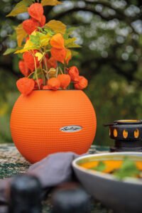 Ton in Ton bringen Lampionblume und PURO Color 20 in Blutorange deinen Garten zum Leuchten
