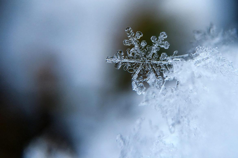 Zauberkraft aus der Kälte – DR. GRANDEL BEAUTYGEN