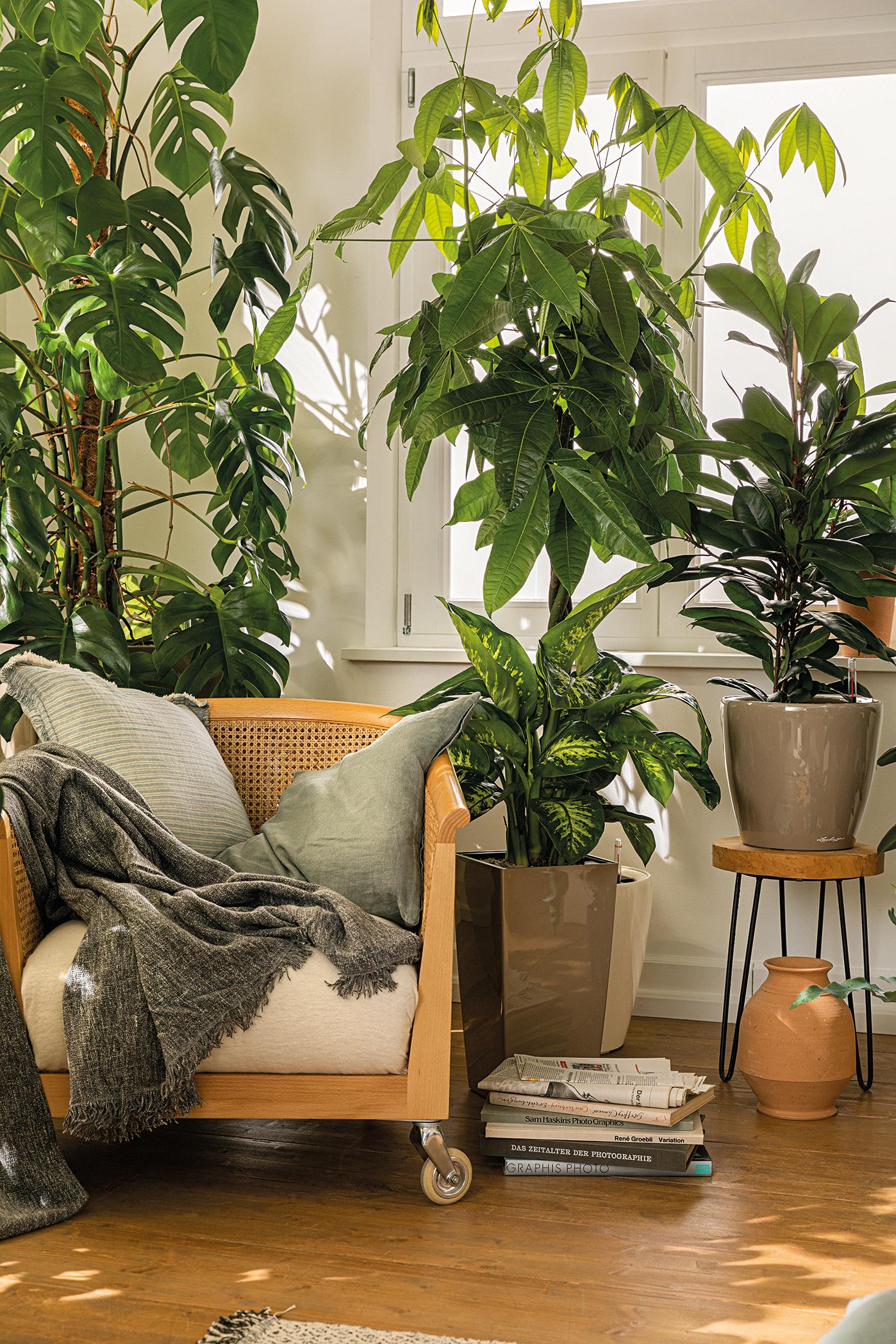 Mit LECHUZA-PON kannst du dir mühelos deinen eigenen Wohlfühlplatz schaffen