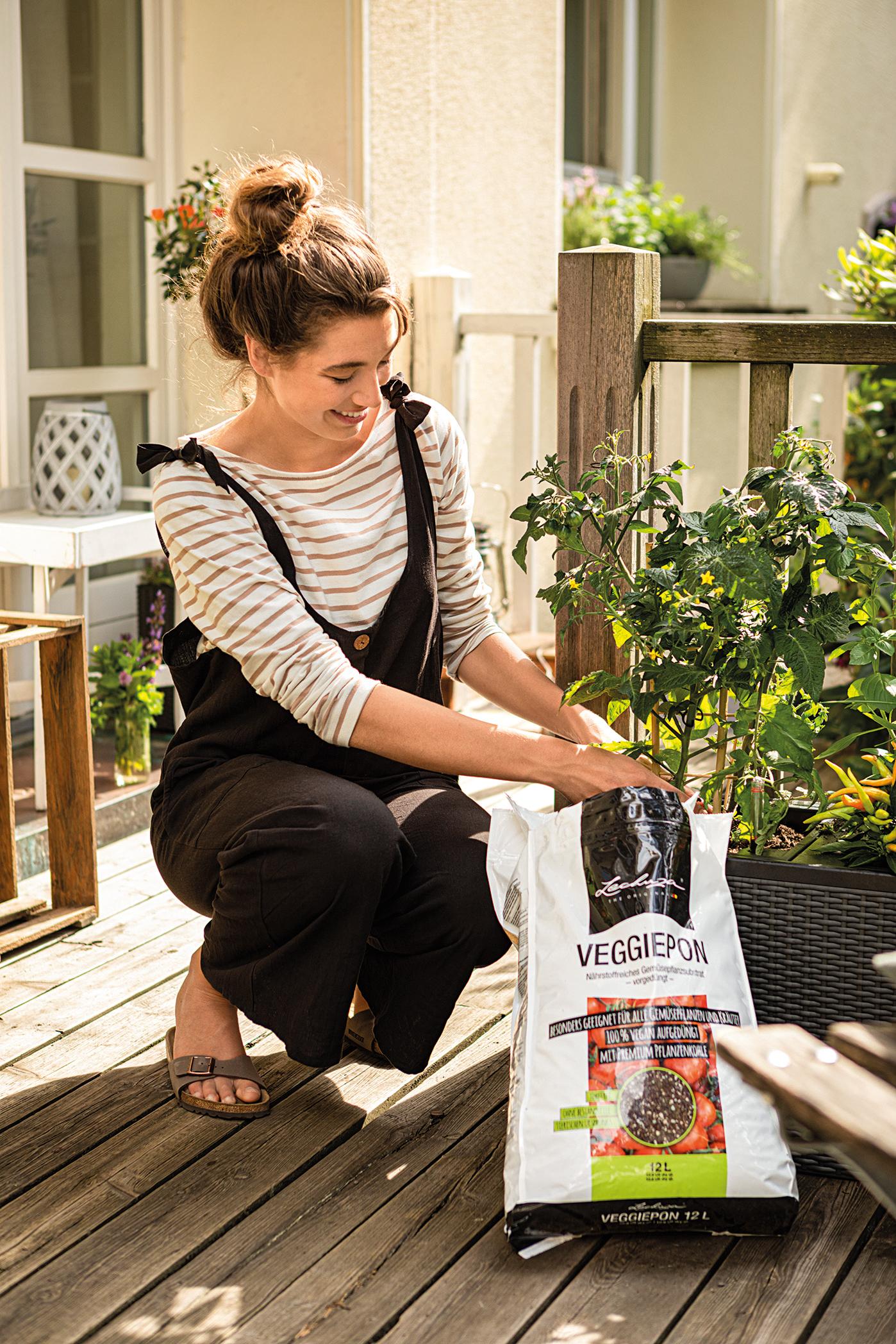 VEGGIEPON macht Gärtner und Gemüse glücklich