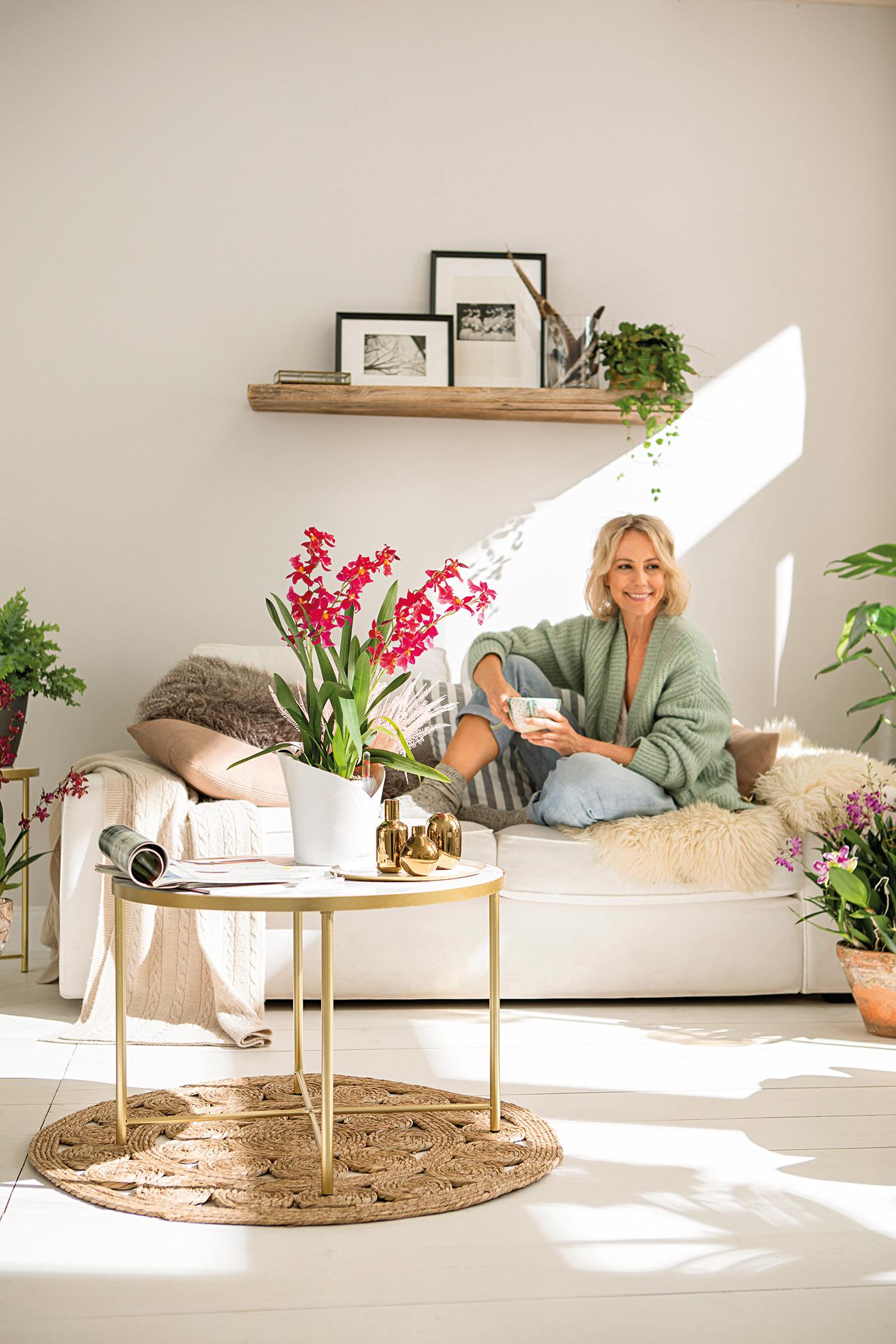 Kuschelplatz mit Orchidee