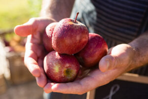 Tag des Deutschen Apfels 2021