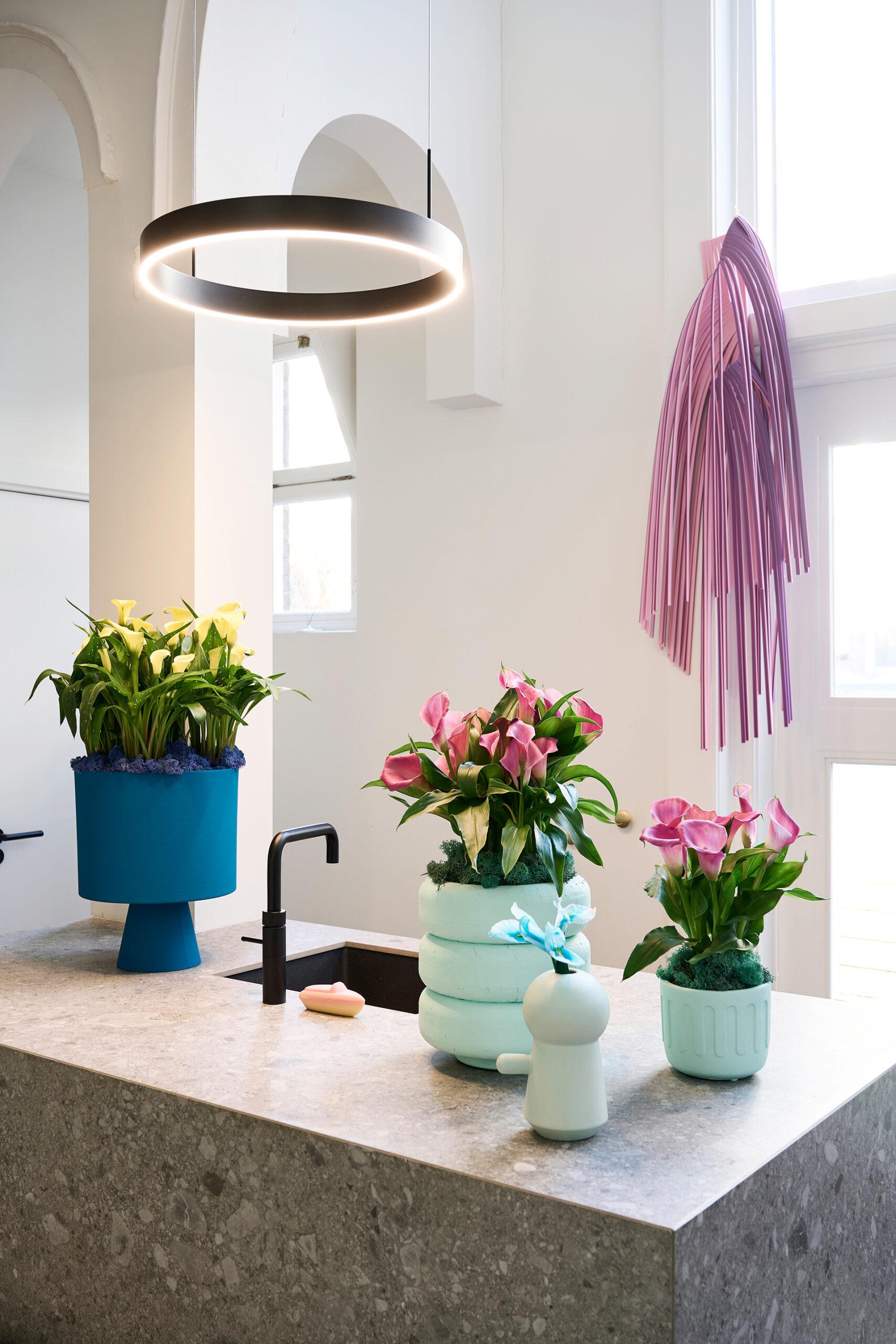 Die Calla-Lilie verleiht jeden Raum ein ganz besonderes Ambiente