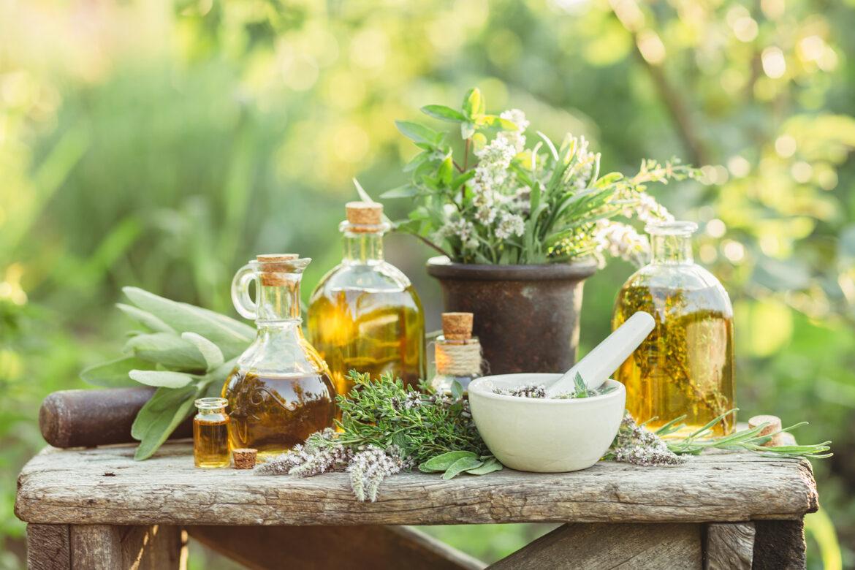 Die grüne Hausapotheke: Über 800 natürliche Heilmittel für die ganze Familie. Vorbeugen – Behandeln – Gesund bleiben