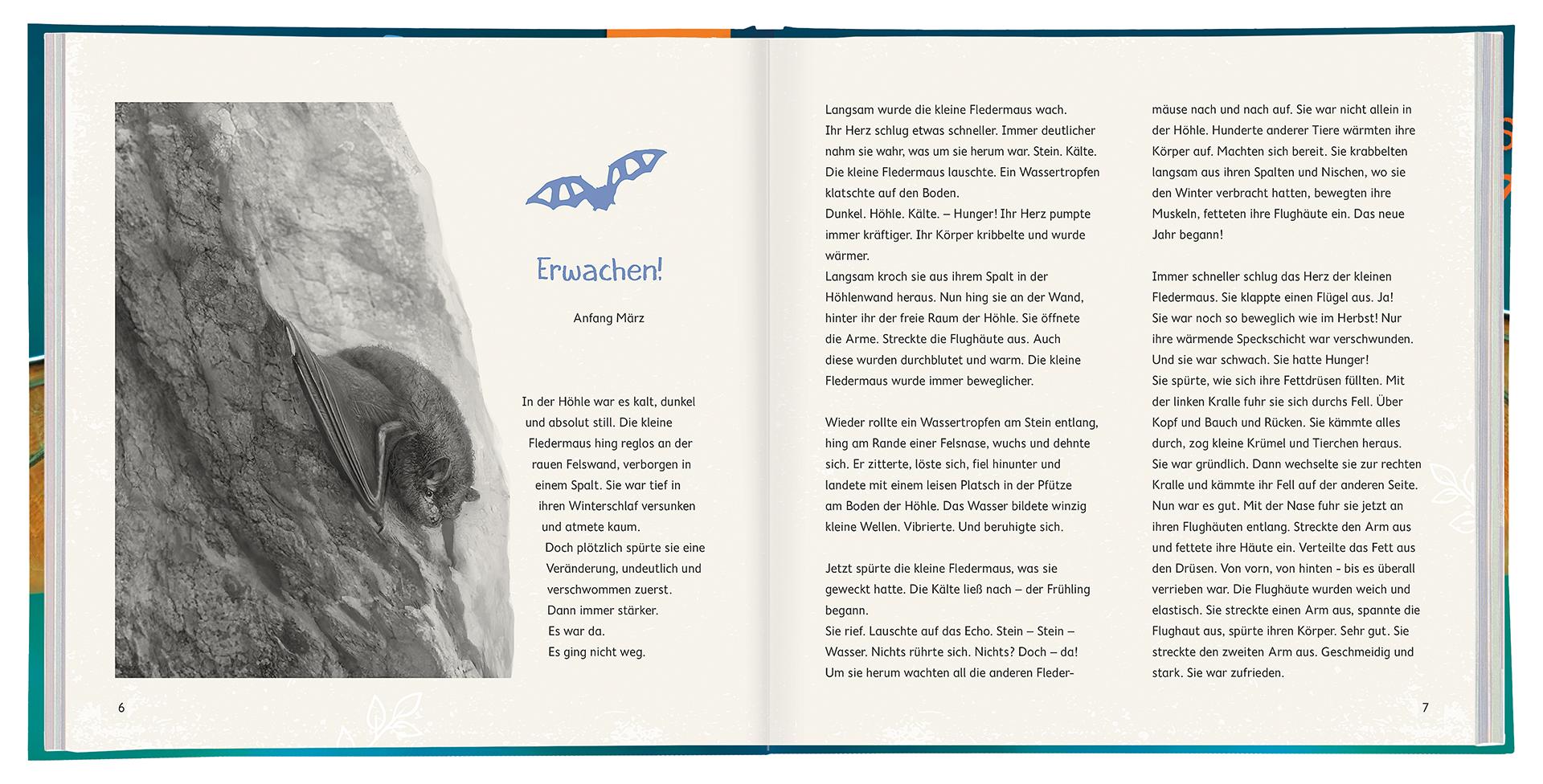 WILD! Die Fledermaus – Beispielseiten 6 und 7