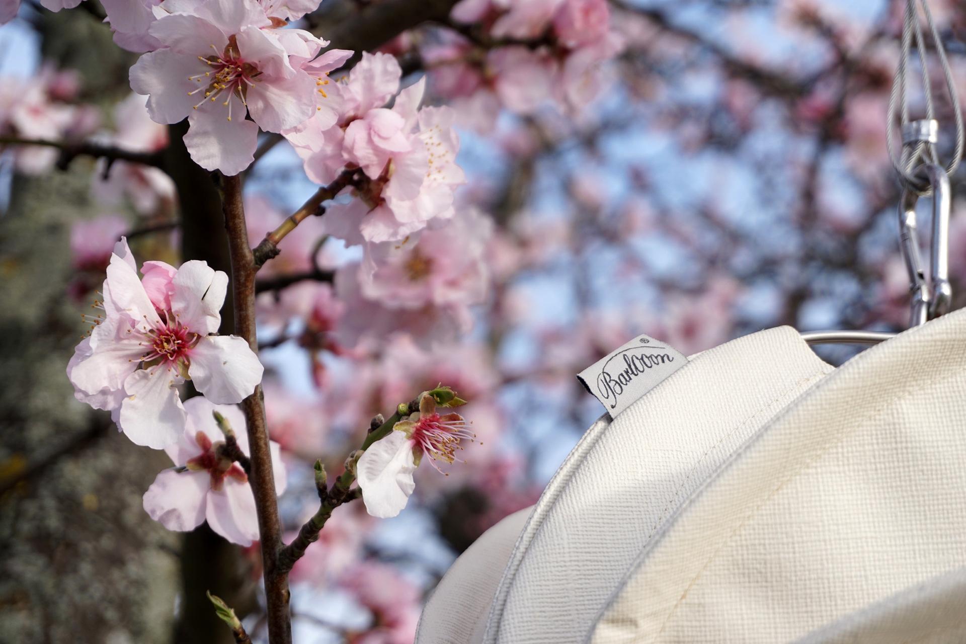 Klassisches Weiß geht immer – als Solokünstler oder in Kombination mit Pink und Taubenblaugrau