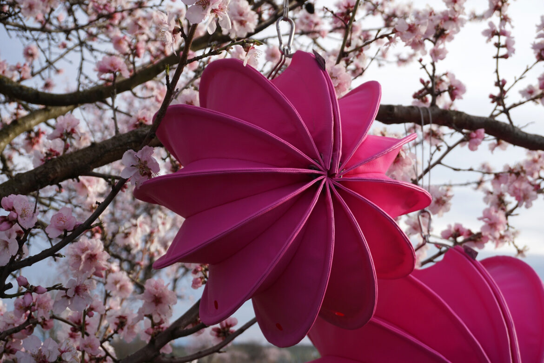 Barlooon begrüßt mit frischen Farben den Frühling