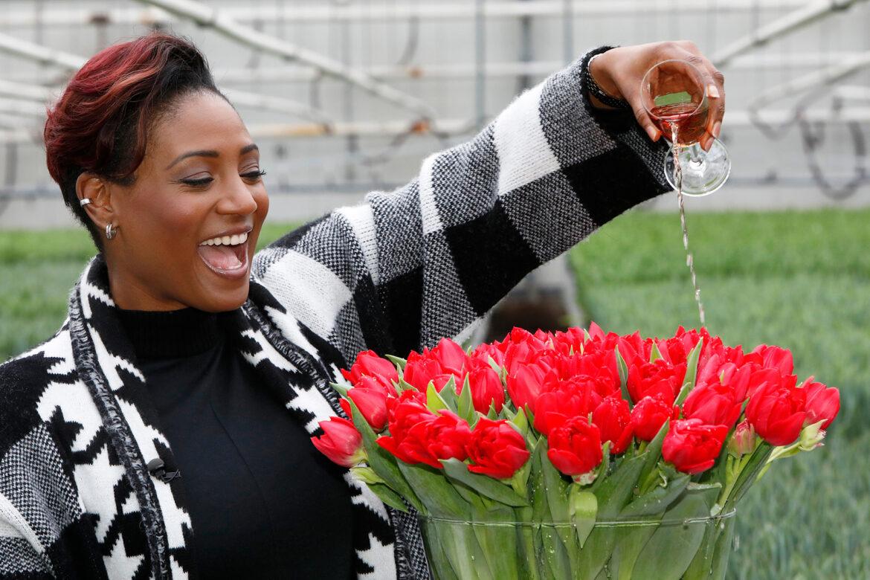 Tulpe »Edsilia« benannt nach Edsilia Rombley – Moderatorin des Eurovision Song Contests 2021 mit eigener Tulpe geehrt