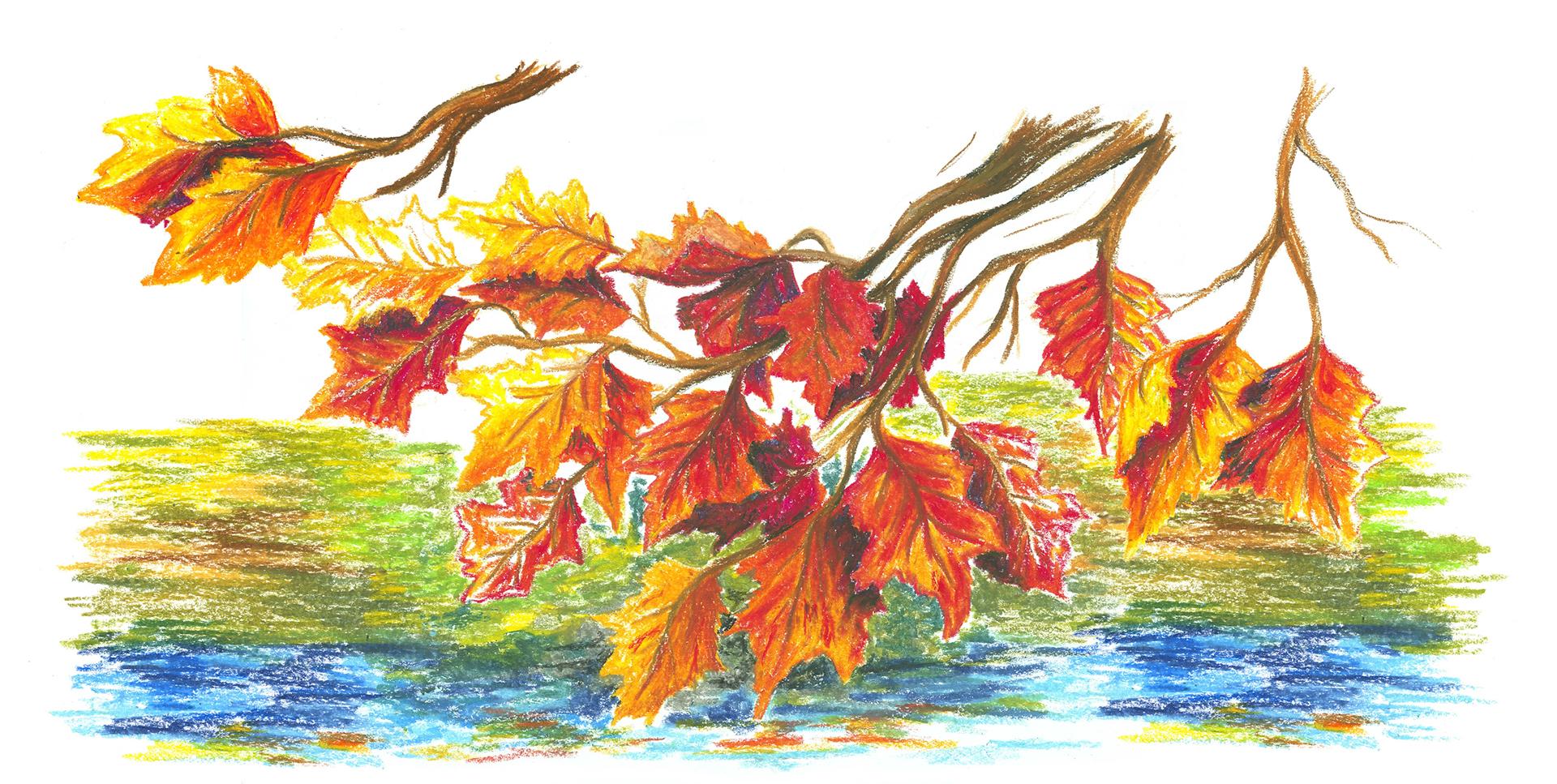So könnten deine Herbstblätter aussehen