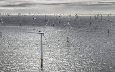 SEC2021: Supplying to offshore wind?  How to make your offering relevant to the developer.