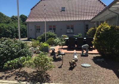 Grønmosegård Sommer 2018
