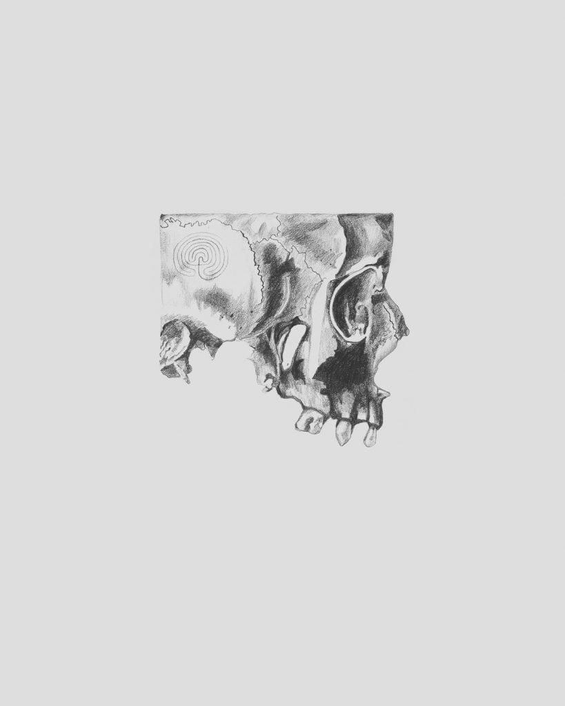 GRRR Skull Fragment