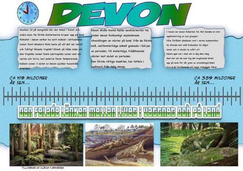 5 Devon