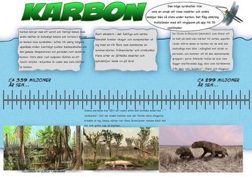 6 Karbon