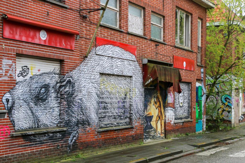 Graffiti Roa Doel