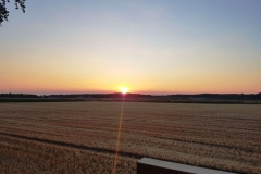 Sonnenuntergang Fuchswoche