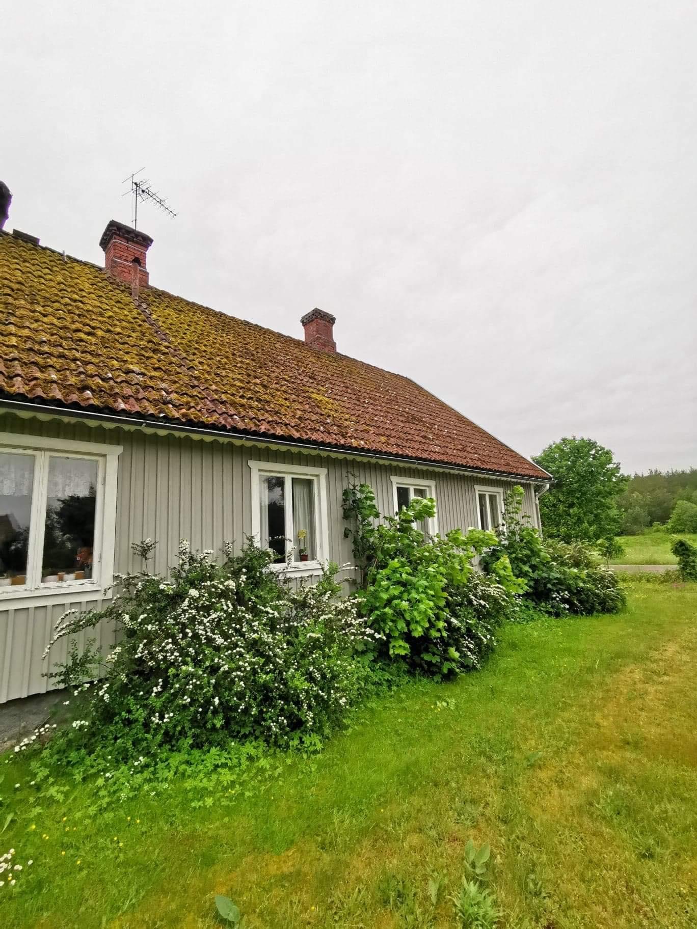 Hustak innan takbehandling utan högtryckstvätt
