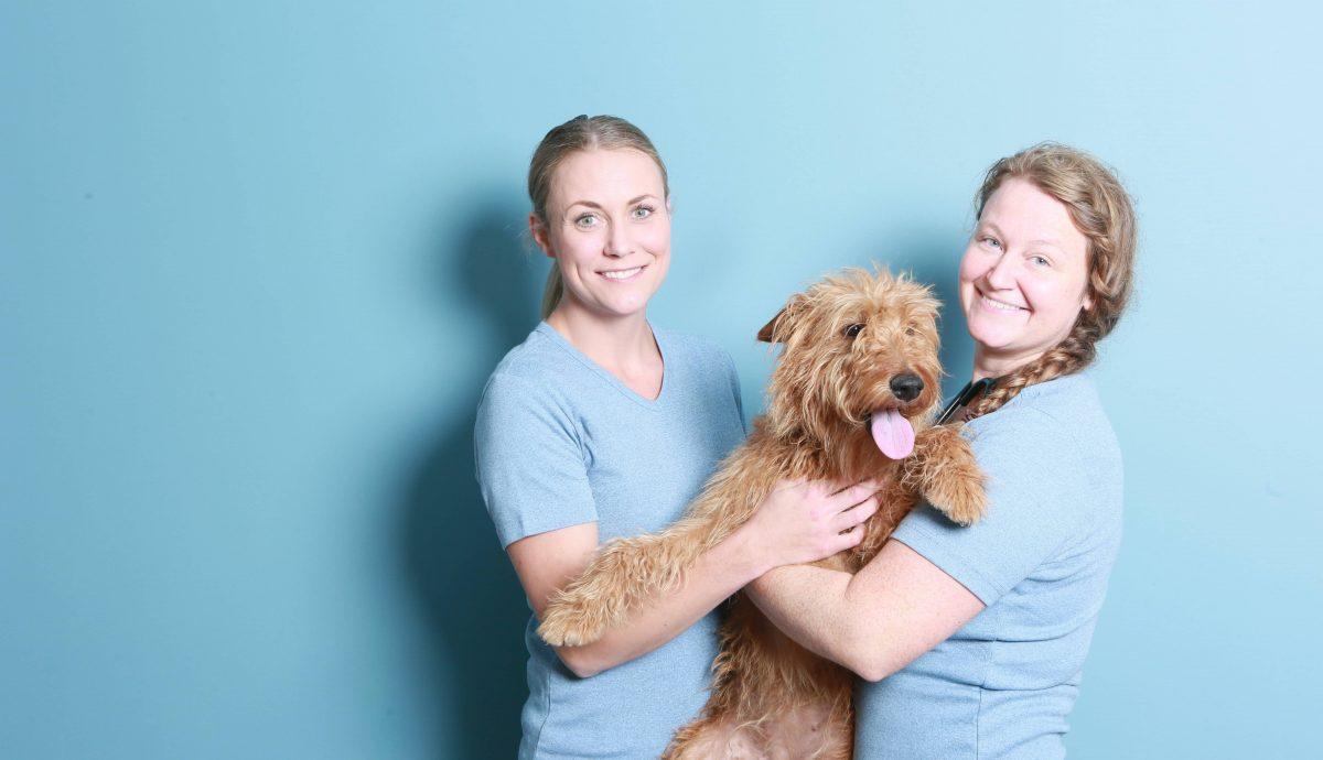 Personalet i Haarby Dyreklinik, Veterinærsygeplejerske Julie og Dyrlæge Naja.