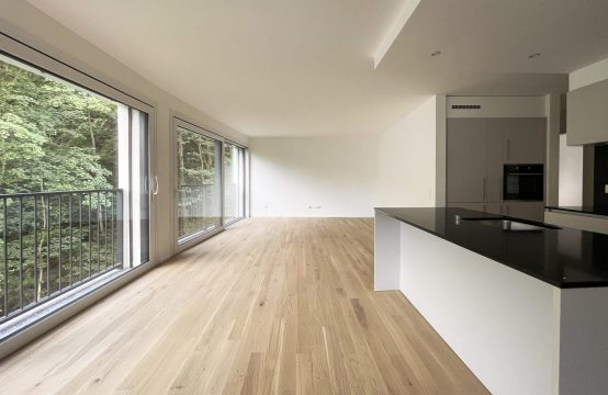 Appartamento 4.5 locali al piano 1