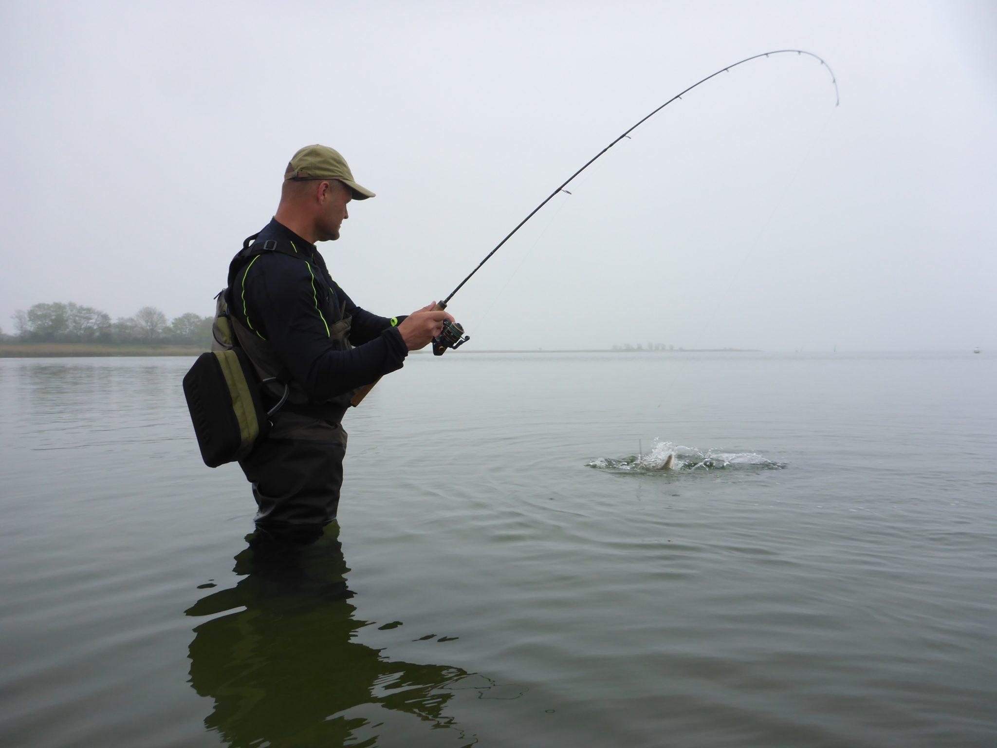 Lystfiskeri fra Ørby Hage til Avnø Vig