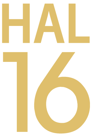 https://usercontent.one/wp/www.hal16.be/wp-content/uploads/2019/12/logo-hal-16-dak.png