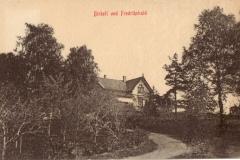 Birkeli
