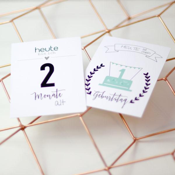 milestone cards geburt geschenk mama schwanger
