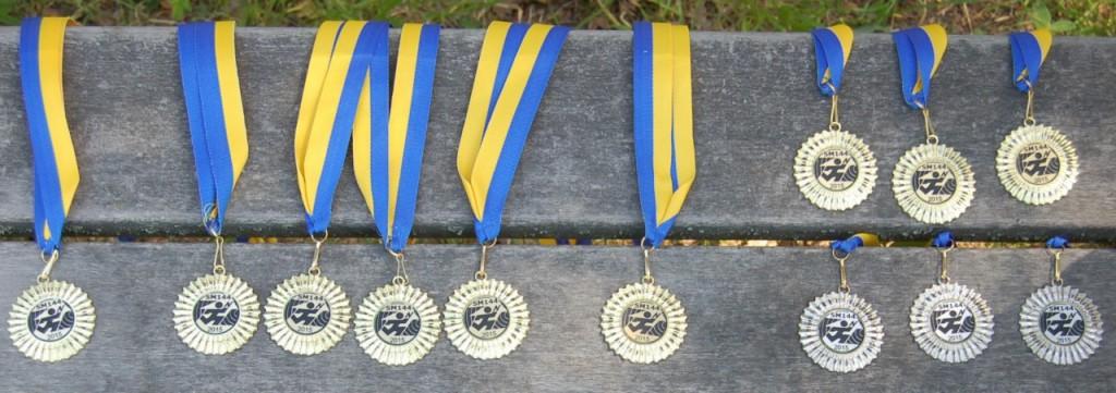 SM medaljer 2015