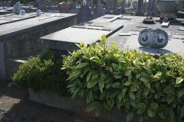 1450_Oostende Oude begraafplaats Huys_Paul_2 11-09-2009 PSels.jpg 1450_Oostende Oude begraafplaats Huys_Paul_1 11-09-2009 PSels.jpg