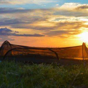 Lawson Hammock Blue Ridge - myggshelter