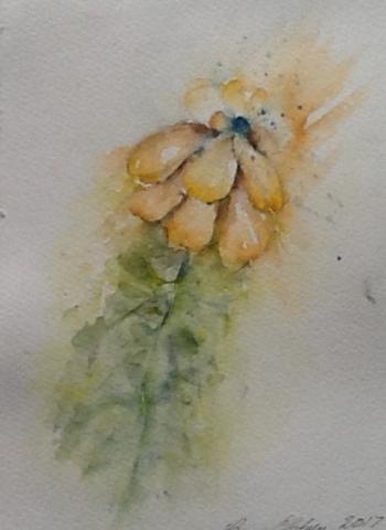 Vissen blomst. Hanne Ohlsen